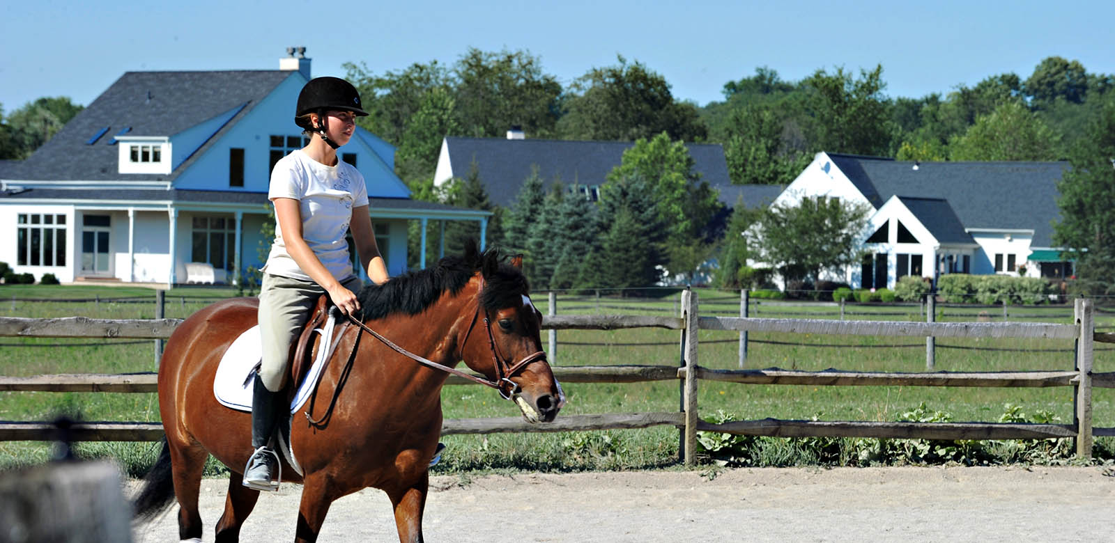 activities-equestrian